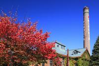 サッポロビール園・開拓使館と紅葉 10769003969| 写真素材・ストックフォト・画像・イラスト素材|アマナイメージズ