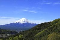 旧御坂峠から望む富士山と新緑の山肌