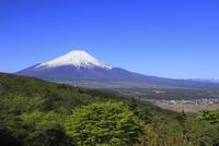 二重曲峠から望む富士山