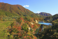 災害遺構 崩壊した祭畤大橋(まつるべおおはし)と紅葉
