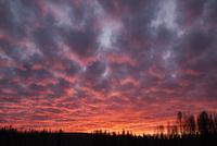 フィンランド北部の夕焼け 10770000016| 写真素材・ストックフォト・画像・イラスト素材|アマナイメージズ