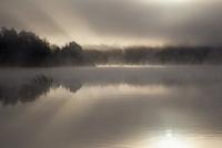 ストックホルム郊外の湖の朝霧 10770000017| 写真素材・ストックフォト・画像・イラスト素材|アマナイメージズ