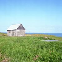 アイスランドの夏の青空と緑の草原の中に見える魚を干すための小屋