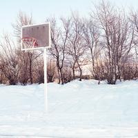 アイスランドの雪景色の中の小さな林の前にそびえるバスケットゴール