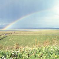 アイスランドの北部の村Saudarkrokurの農場から望む草原と虹