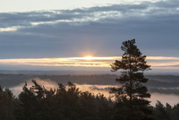 朝靄と雲の切れ目から射す日の出 10770000132| 写真素材・ストックフォト・画像・イラスト素材|アマナイメージズ