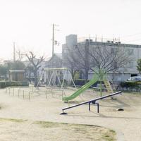 冬 日曜日の公園