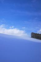 青い影 10770000173| 写真素材・ストックフォト・画像・イラスト素材|アマナイメージズ