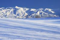 青い影と十勝岳 10770000228| 写真素材・ストックフォト・画像・イラスト素材|アマナイメージズ