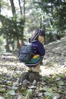 森の中で切り株の上にしゃがんで振り返る女の子