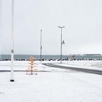 アイスランドの海岸沿いでうっすら積もった雪に光るクリスマスツリーや街灯