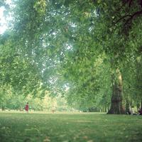 イギリス,ロンドンのリージェントパークでサッカーをする子供たち
