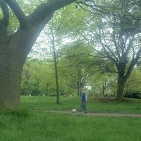 イギリス,ロンドンのリージェントパークでボールを蹴る少年