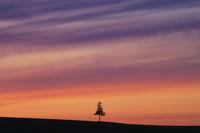 夕焼け 10770000356| 写真素材・ストックフォト・画像・イラスト素材|アマナイメージズ