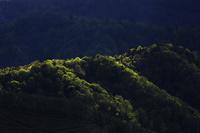 山と光 10770000361| 写真素材・ストックフォト・画像・イラスト素材|アマナイメージズ