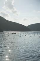 漁をする舟