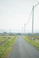 田園を走るトラクター
