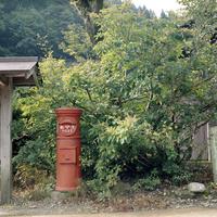 田舎道の木々と丸いポスト
