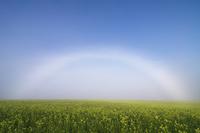 キガラシの丘と白虹 10770000554| 写真素材・ストックフォト・画像・イラスト素材|アマナイメージズ