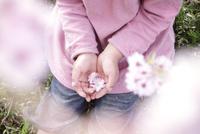桜の花びらを手のひらに乗せた女の子