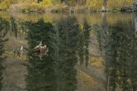 トゥームストーン準州立公園にある池に反射し映り込む景色 10770000623| 写真素材・ストックフォト・画像・イラスト素材|アマナイメージズ