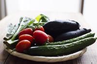 ざるに盛られた野菜