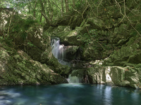 渓谷と清流の流れ