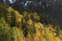十勝岳の紅葉 10770000641| 写真素材・ストックフォト・画像・イラスト素材|アマナイメージズ