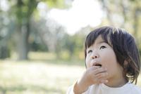 草原で食べ物を手で食べる幼児