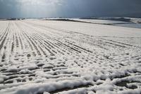 雪丘と光芒 10770000690| 写真素材・ストックフォト・画像・イラスト素材|アマナイメージズ