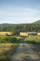 カラフルな小屋