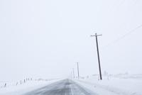 ワシントン州の冬の雪道