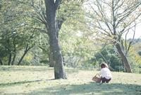 かごを持って芝生の上にしゃがむ幼児