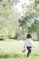 芝生の上を歩く幼児の後ろ姿