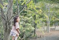 木に登って遠くを見て微笑む少女