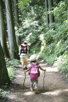 森の中を歩く女の子とその父親の後ろ姿