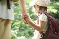 森の中で女の子と父親のつないだ手