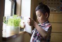 タブレットで水槽や植物の写真を撮る小学生の男の子