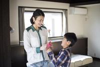 母親にカーネーションを渡す小学生の男の子 10778001883| 写真素材・ストックフォト・画像・イラスト素材|アマナイメージズ