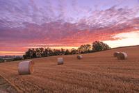 朝焼けの空と麦わらロール