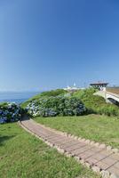夏の龍飛崎 10790000787| 写真素材・ストックフォト・画像・イラスト素材|アマナイメージズ