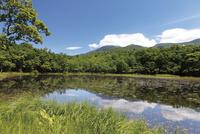 知床一湖から見える知床連山