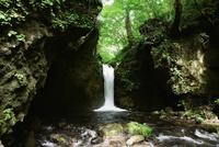 信濃路自然歩道の竜返しの滝(すずが滝)