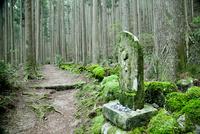 熊野古道と苔むす地蔵