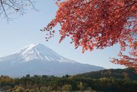河口湖から眺める富士山と紅葉