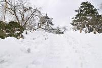 横手雪まつり,かまくら