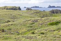 小笠原諸島にてケータ島(聟島)の風景を堪能する人々