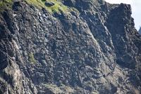海底火山の噴火でできた枕状溶岩