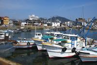 鞆の浦の漁港