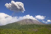 有村溶岩展望所 噴火